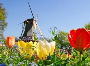 Meer groei economie Nederland in Q4