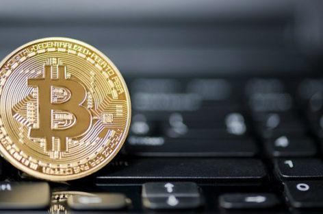 Deze 6 cryptomunten zijn extra populair bij professionele beleggers – maar die roepen ook maar wat