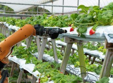 Kies voor commodities agricultuur, aluminium en mais