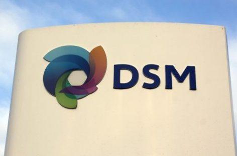 DSM legt de aandeelhouders in de watten