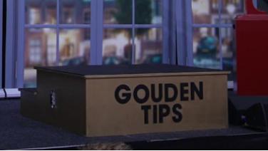 Gouden tips van de goeroes!